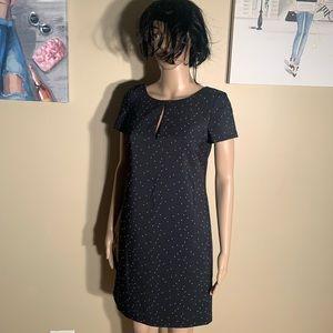 NWOT Ann Taylor Size 0 Polka Dot Dress Pencil